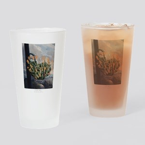 The Aloe, The Temple of Flora Drinking Glass
