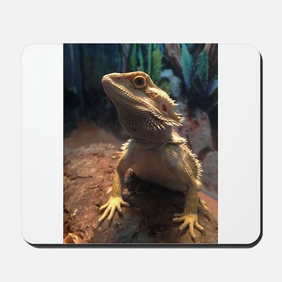 Bearded Dragon Mousepad