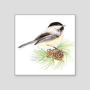 Chickadee Pine Sticker
