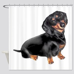 Black-Tan Dachshund Shower Curtain