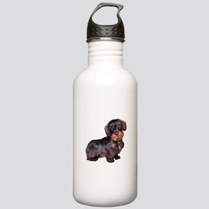 Wire Haired Dachshund (#1)q Stainless Water Bottle