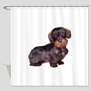 Wire Haired Dachshund (#1)q Shower Curtain