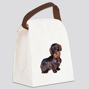 Wire Haired Dachshund (#1)q Canvas Lunch Bag