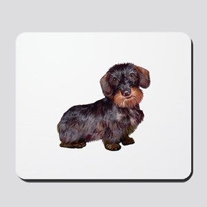 Wire Haired Dachshund (#1)q Mousepad