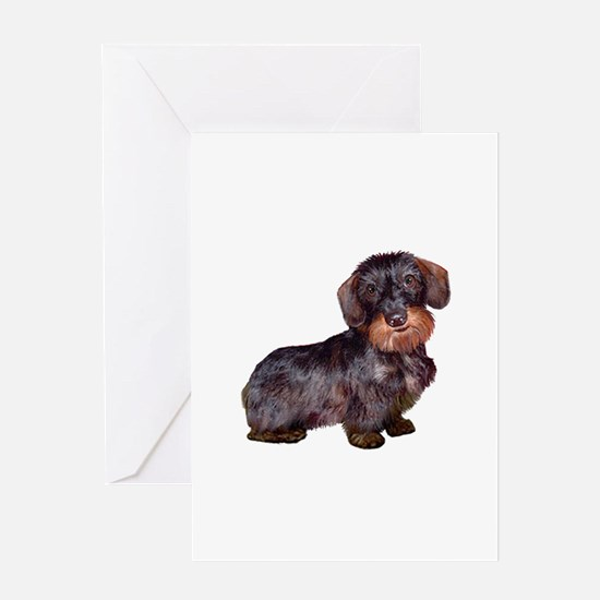 Wire Haired Dachshund (#1)q Greeting Card