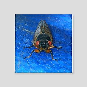 """Cady- The Cicada Square Sticker 3"""" x 3"""""""