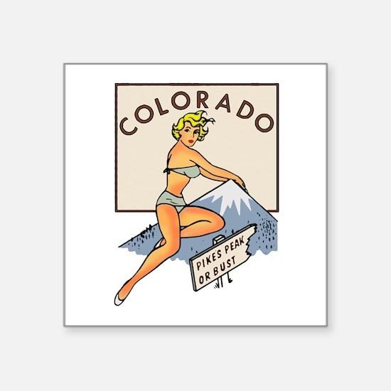 Colorado Pinup Sticker