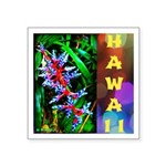 Hawaiian FireCracker Heliconia Square Sticker 3