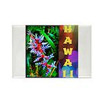 Hawaiian FireCracker Heliconia Rectangle Magnet