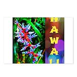 Hawaiian FireCracker Heliconia Postcards (Package