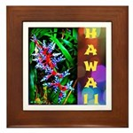 Hawaiian FireCracker Heliconia Framed Tile