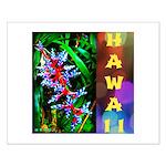 Hawaiian FireCracker Heliconia Small Poster