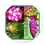 Native Hawaii's Tropical Flora Round Car Magnet