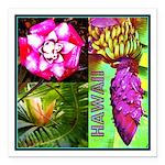 Native Hawaii's Tropical Flora Square Car Magnet 3