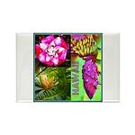 Native Hawaii's Tropical Flora Rectangle Magnet