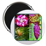 Native Hawaii's Tropical Flora 2.25