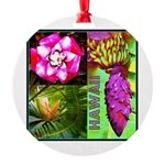 Native Hawaii's Tropical Flora Round Ornament