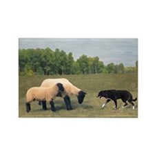 Dog Meets Sheep Rectangle Magnet