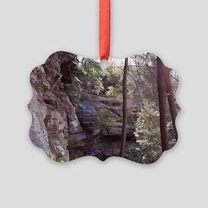 100_6061 Picture Ornament