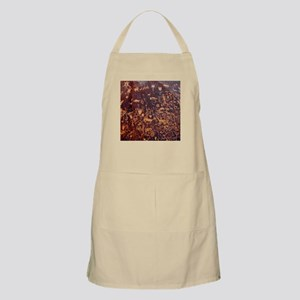 Newspaper Rock Petroglyph Apron