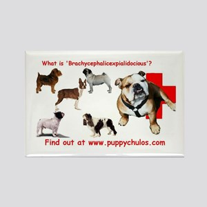 Brachycephalic Rectangle Magnet