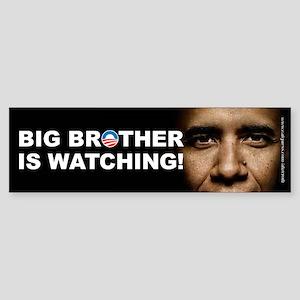 Big Brother Obama, Sticker (Bumper)