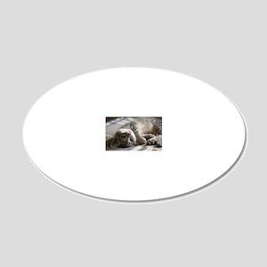 Lying kitten 20x12 Oval Wall Decal