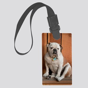 6141337 Large Luggage Tag