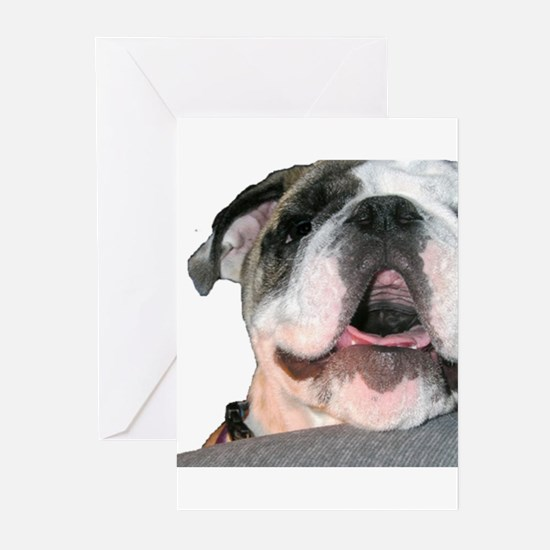 Bulldog Face Greeting Cards (Pk of 10)
