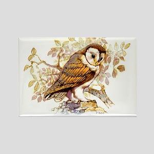 Barn Owl Peter Bere Design Rectangle Magnet
