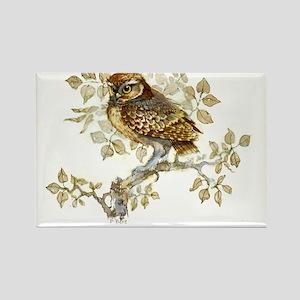 Little Owl Peter Bere Design Rectangle Magnet
