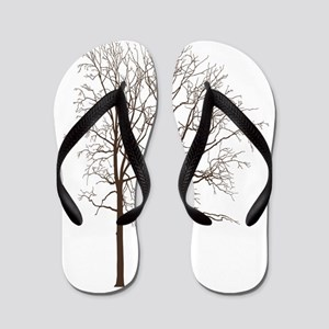 Brown Trees Flip Flops