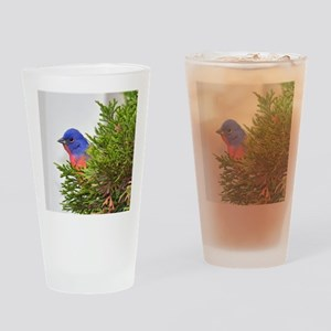 Painted Bunting Drinking Glass