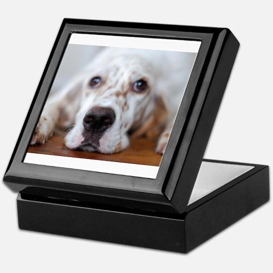 Cute Dogs english setter Keepsake Box
