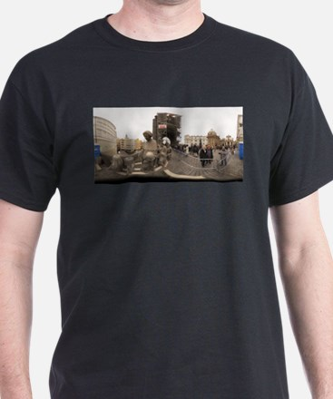 the old statues - rect T-Shirt