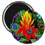 Hawaiian Torch Heliconia & Butterflies 2.25&qu