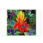 Hawaiian Torch Heliconia & Butterflies Postcards (