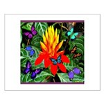 Hawaiian Torch Heliconia & Butterflies Small P