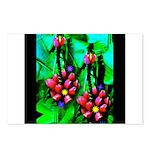 Mystic Hawaiian Banana Flower Postcards (Package o
