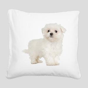 Maltese Square Canvas Pillow