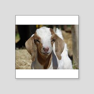 Cutie Kid Goat Sticker