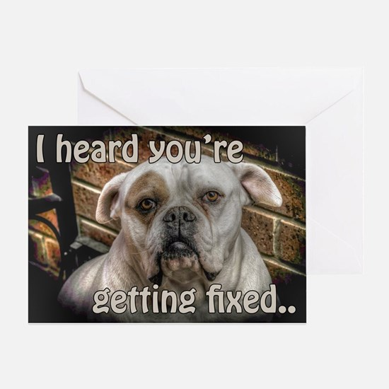 bulldog Get well card for dogs Greeting Card