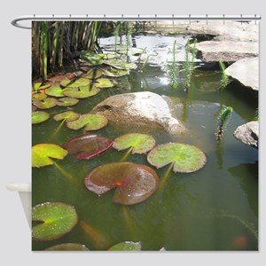 LILY PADS IN KOI POND