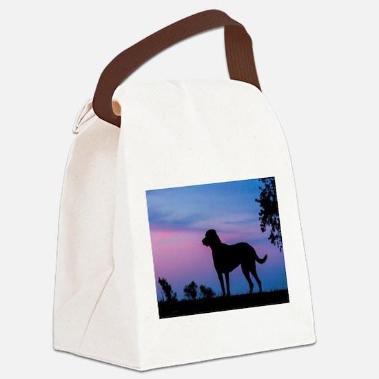 Cute Chesapeake bay retriever Canvas Lunch Bag
