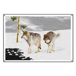Wolves in Snow Banner