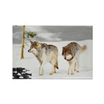 Wolves in Snow Rectangle Magnet (10 pack)