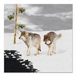 Wolves in Snow Square Car Magnet 3