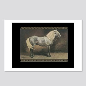 Percheron Horse Postcards (Package of 8)