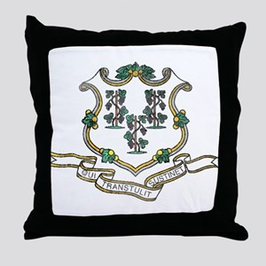 Vintage Connecticut State Flag Throw Pillow
