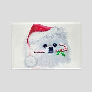 Trish's Pomeranian Christmas Rectangle Magnet